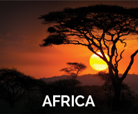 programpg-africa